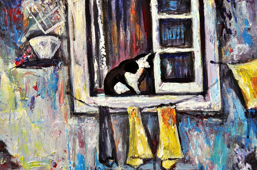 cat-in-window-alfama2.jpg